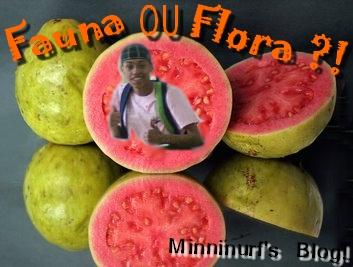 FaunaOUFlora